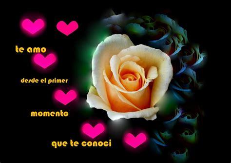 imagenes te amo con una rosa imagen de amor de una rosa con corazones rosados