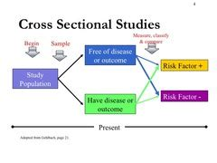 cross sectional studies cross sectional studies disease frequency surveys