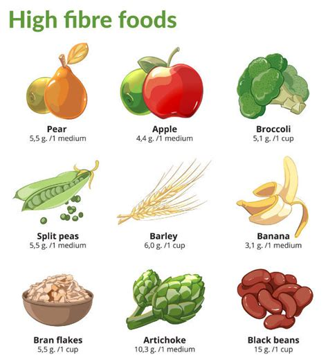 alimenti con fibre how to curb hunger cravings with fibre nature s appetite