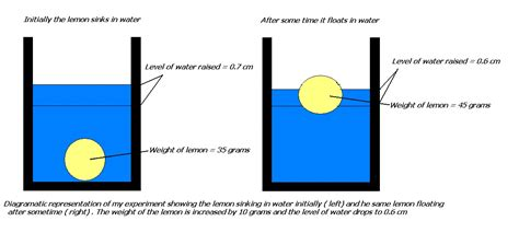 floating and sinking boat experiment my experiments and results why does a lemon sink in water
