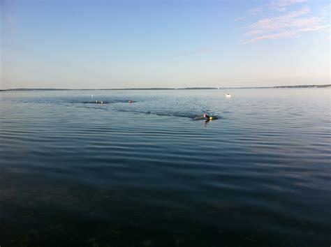Open Water open water triton swimming