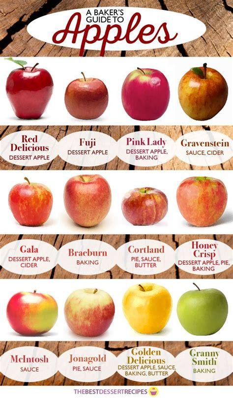 25 best ideas about apples on pinterest apple baking