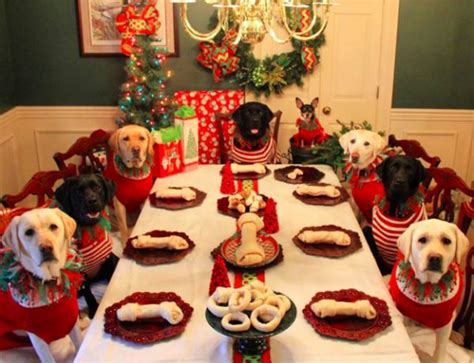 Christmas Dinner Table couple sets up a christmas dinner table for dogs neatorama