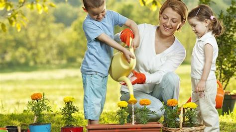 family gardening starting a family garden tips for beginners parenting squad