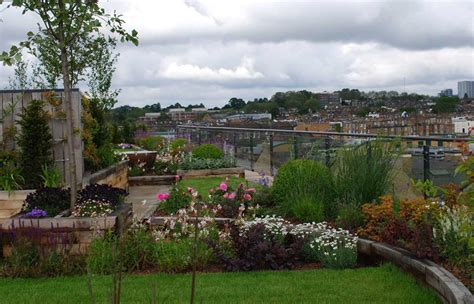 livi apartments green roof diana milner garden design roof garden camden
