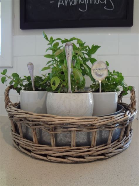 kitchen herb garden ideas 30 herb garden ideas to spice up your garden