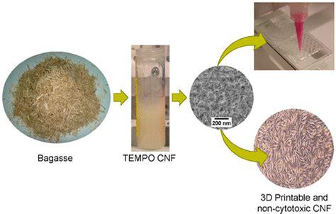 How To Make Paper From Sugarcane Bagasse - bagasse fibers as bioink research shows that sugarcane