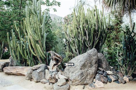 moorten botanical garden palm springs california