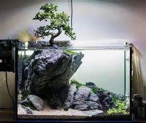 Aquascape Ada How Hard Would It Be To Keep A Bonsai Like This Plantedtank