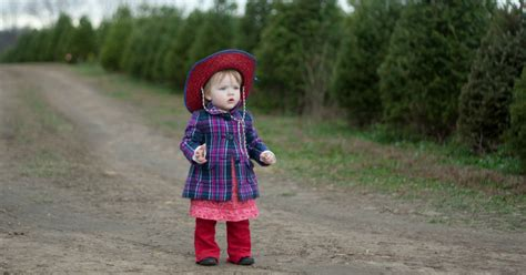piney acres christmas tree farm is a beautiful family