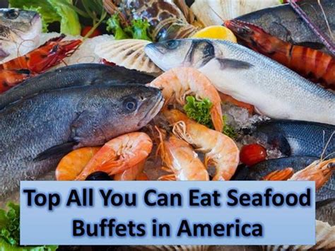 all you can eat seafood buffets top all you can eat seafood buffets in america authorstream