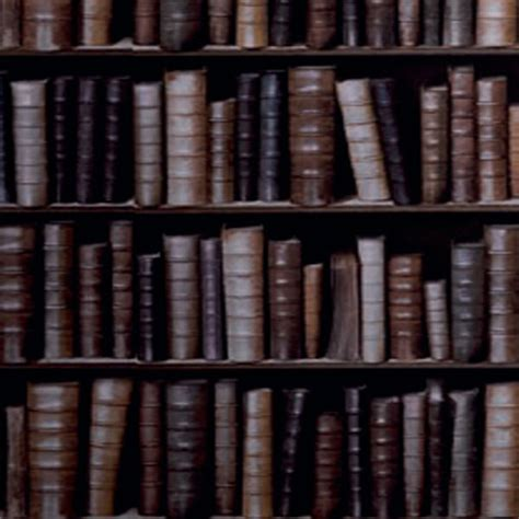 bookcase wallpaper harry corry limited