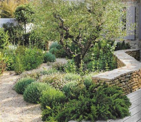 Plante Pour Jardin Sec by Les 25 Meilleures Id 233 Es De La Cat 233 Gorie Jardin Sec Sur