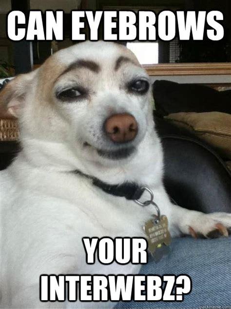 Eyebrows Internet Meme - eyebrows memes quickmeme