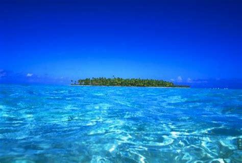 el mar de los 8498382807 diez cosas que puedes hacer para salvar los oceanos