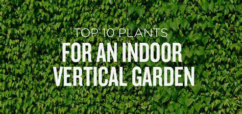 Make Vertical Garden - top 10 plants for a vertical indoor garden popexpert com