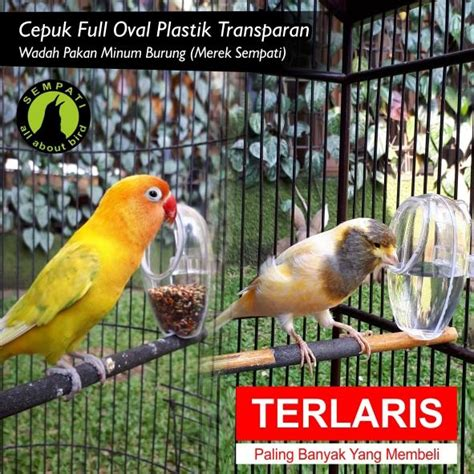 Tempat Makan Burung Anti Tumpah tempat pakan hewan model kayu daftar harga terupdate