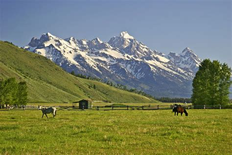 ranch land jackson land cattle ranch on sale for 175 million