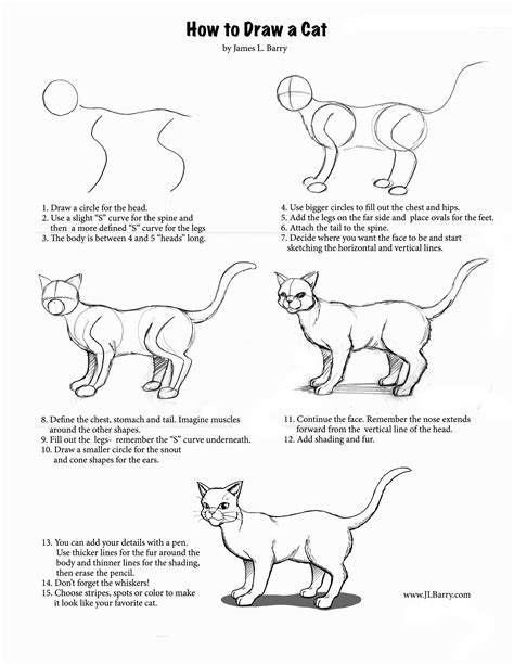 doodle cat drawing how to draw l barry