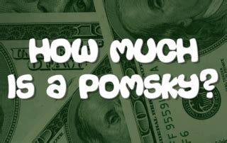 how much is a pomsky puppy pomsky puppies pomsky pals