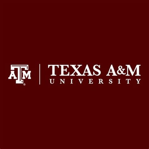 Tamu Mba Financial Engineering by A M