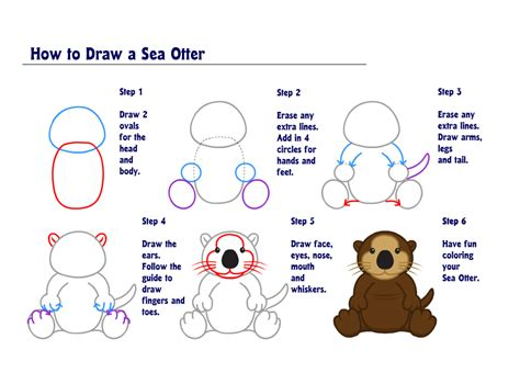 How To Draw A Sea Otter learn how to draw a sea otter wkn webkinz newz