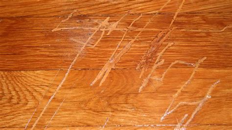 Wood Floor Scratch Repair Best Way To Repairing Scratches From Wood Floors Furniture Felt Pads