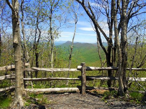 hiking with a bald white elk knob state park mt
