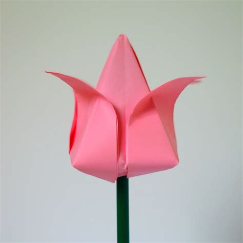 Folding Paper Craft - tulip flower origami scissors easy and diy paper