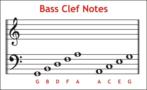 bass clef notes 21 055 notes on the staff bass clef