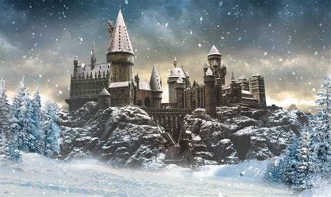 All Comments On Harry Potter Owned A Snow Owl This Is A - visit hogwarts in the snow at warner bros studios geekynews