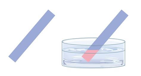 How To Make Litmus Paper At Home - indicators acids and bases