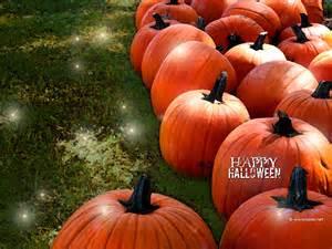 halloween pumpkin patches halloween pumpkin patch wallpaper images amp pictures becuo
