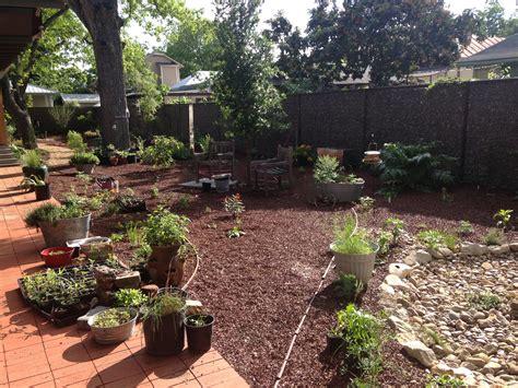 backyard mulch butterfly gardening texasbutterflyranch