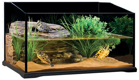 aquarium design for turtles turtle tank for the well being of your turtles info turtle