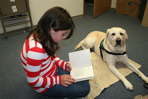 reading to dogs reading to west slope community library