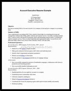 Executive Summary Examples For Resume Executive Summary Resume Samples