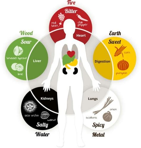 The Flavors of Five Element Theory ? Fremont Community Acupuncture