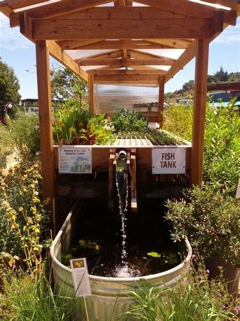 Backyard Aquaponics System Design by How To Diy Aquaponics The How To Diy Guide On Building