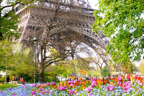 Beautiful Eiffel Tower by Paris In Spring Eiffel Tower Falling Off Bicycles