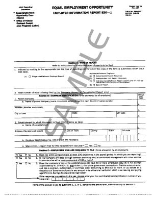 turn report sle eeo 1 report form template fillable eeo 1 sle form