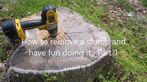tree stump easy way to remove tree stumps part 1 doovi