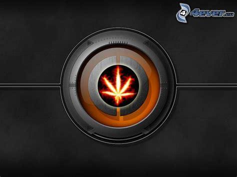 Ganja Abstact marijuana
