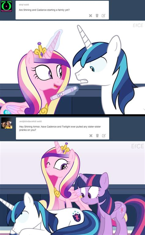 my little pony princess twilight sparkle pregnant baby 7 best mlp images on pinterest ponies pony and baby horses