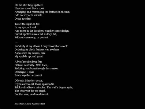 themes in black rook in rainy weather 1000 images about poetry and such on pinterest
