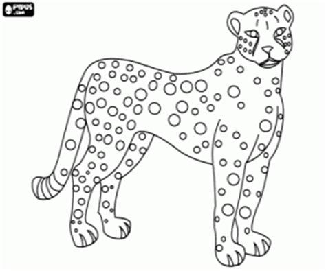 imagenes jaguar para colorear juegos de felinos para colorear imprimir y pintar