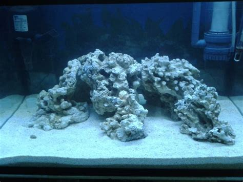 live rock aquascaping ideas 17 best images about aquascaping ideas on pinterest