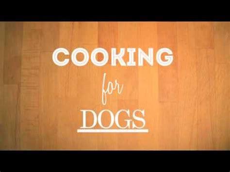 alimentazione casalinga per cani alimentazione casalinga per cani