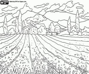 juegos de paisajes naturales para colorear imprimir y pintar juegos de paisajes naturales para colorear imprimir y pintar