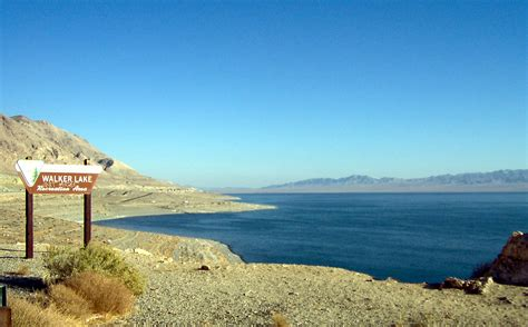 Nevada Size 38 6 file walker lake nevada jpg wikimedia commons
